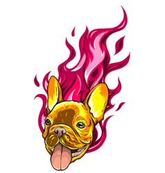 Carlino head dog flame tattoo vector