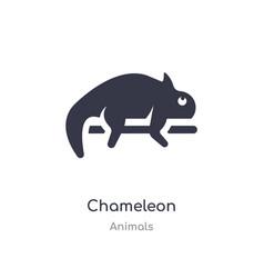 Chameleon icon isolated icon from vector