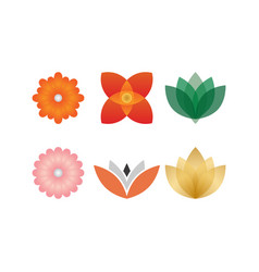 collection of abstract flower template vector image