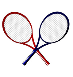 crossed rackets vector image