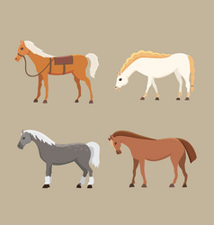 Cute horses in various poses design vector