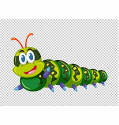 Green caterpillar in green color vector