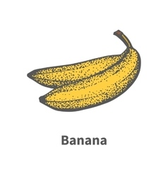 Hand-drawn ripe yellow banana vector