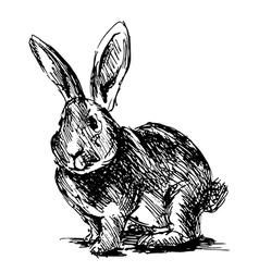Hand sketch rabbit vector