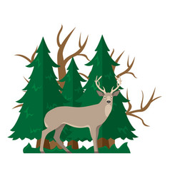 Isolated with a deer in a forest vector