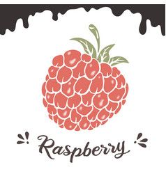 raspberry berry clipart vector image