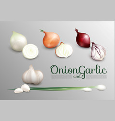 Realistic fresh vegetables set vector