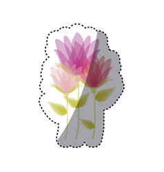 sticker faded set collection bud flower floral vector image