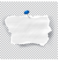 torn piece of white paper with ripped edges and vector image