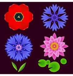 Set of flowers lotus cornflower tulip isolated vector image vector image