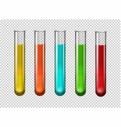 colorful chemical in test tubes vector image