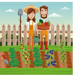 couple farmers vegetable basket field fence vector image