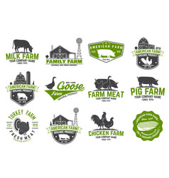 american farm badge or label vector image