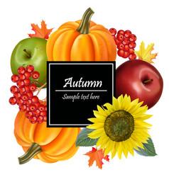 autumn harvest realistic sunflowerpumpkin vector image