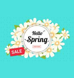 hello spring season time sales season banner or vector image