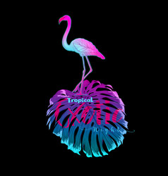 summer composition palm leaves with flamingo in vector image