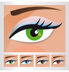 Woman eyes different colors vector