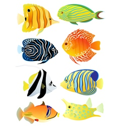 Collection of tropical fish vector