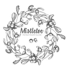 Hand drawn botanical sketch wreath mistletoe vector