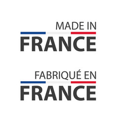 two simple symbols made in france vector image