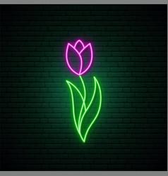 Violet tulip flower neon sign bright light spring vector