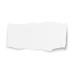 White paper tear placed on background vector