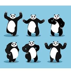 Panda set Chinese bear variety of poses Animal vector image vector image