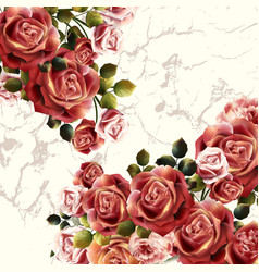 Beautiful background or invitation with rose vector