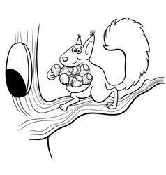 Cartoon squirrel carrying acotns to hollow vector