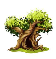 cartoon style oak fairy tale magic tree vector image