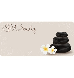 Spa banner vector image