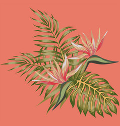 tropical flowers strelizia and palm leaves vector image