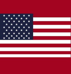 united states national flag vector image