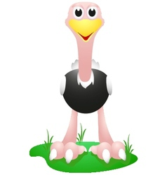 ostrich with simple gradient vector image vector image