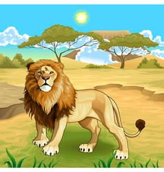 African landscape with lion king vector image
