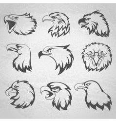 Hawk falcon or eagle head mascot set isolated vector