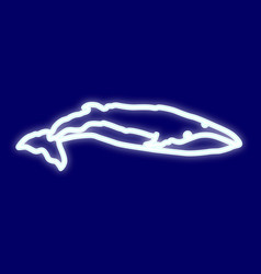 image of blue whale vector image