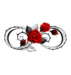 Infinity outline symbol with rose vector