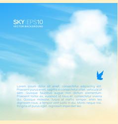 realistic beige-blue sky vector image