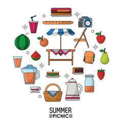 white background poster of summer picnic and vector image