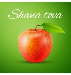 Apple with Shana Tova vector image
