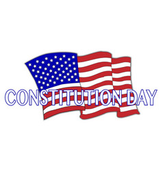 Constitution day flag vector