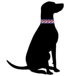 Dog with flea collar vector