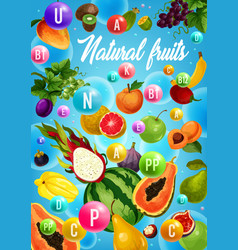 fruits and tropical berries vitamins health food vector image