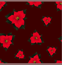 red poinsettia seamless on red background2 vector image