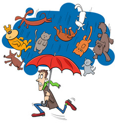 Saying raining cats and dogs cartoon vector