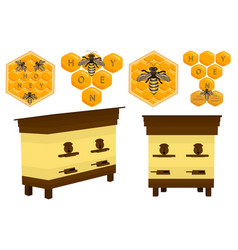 set different types honey different size for bees vector image