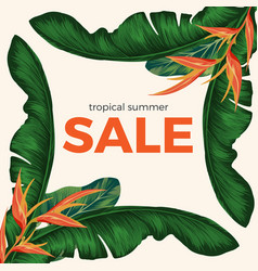 Tropical summer sale promo poster with rainforest vector