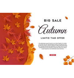 autumn big sale leaves background vector image