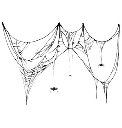 Black spider and torn web on white background vector image